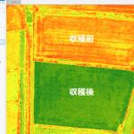 ふつうの写真から作れちゃうのがアツい。VARI なら、RGB 画像から植生の生育状況を把握できます。