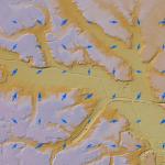 ArcGIS Pro での基盤地図情報データの変換と活用のコツ!その2- 数値標高モデルをベクトル場で表示してみよう
