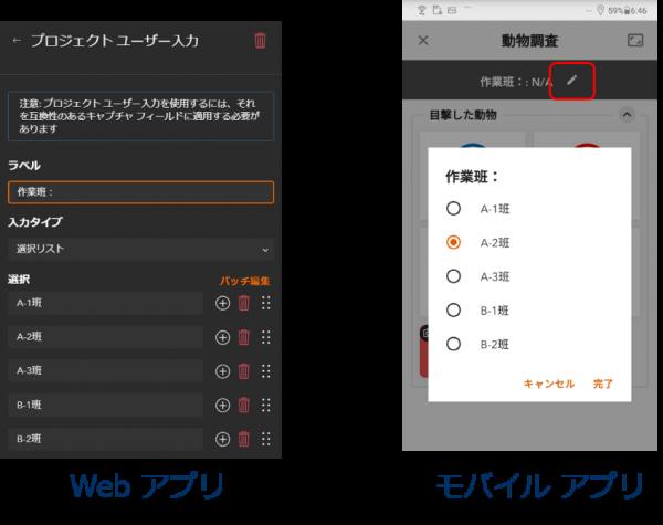 プロジェクトユーザー入力